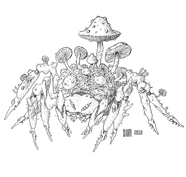Pen and Ink drawing of an infested spider